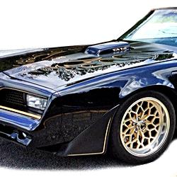 1976-1981 Firebird